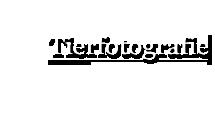 Tierfotografie Schürmann